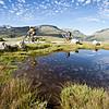 Отдых на Люцернском озере фото 1