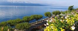 Отдых на Женевском озере фото 2